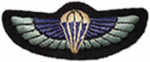 Raiding Forces para wing